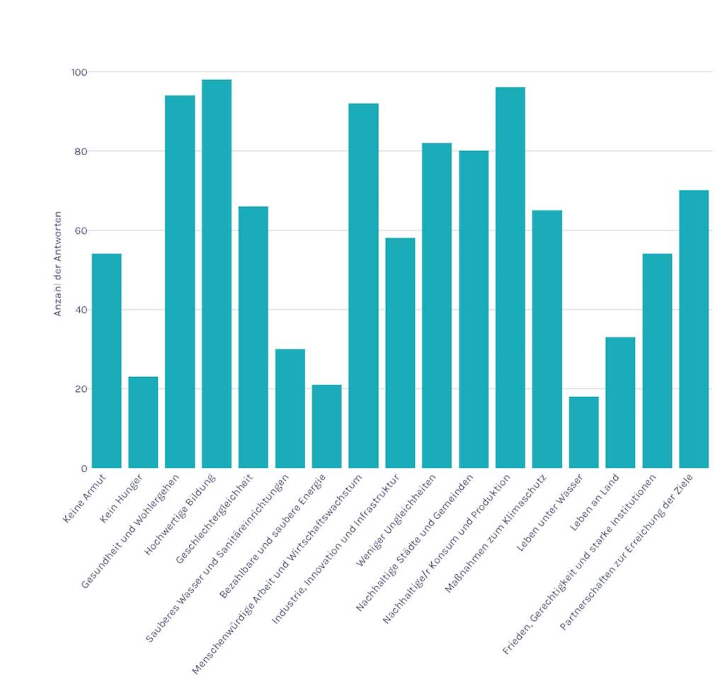 Die Grafik zeigt die Ziele der befragten Organisationen im Bereich Social Entrepreneurship.