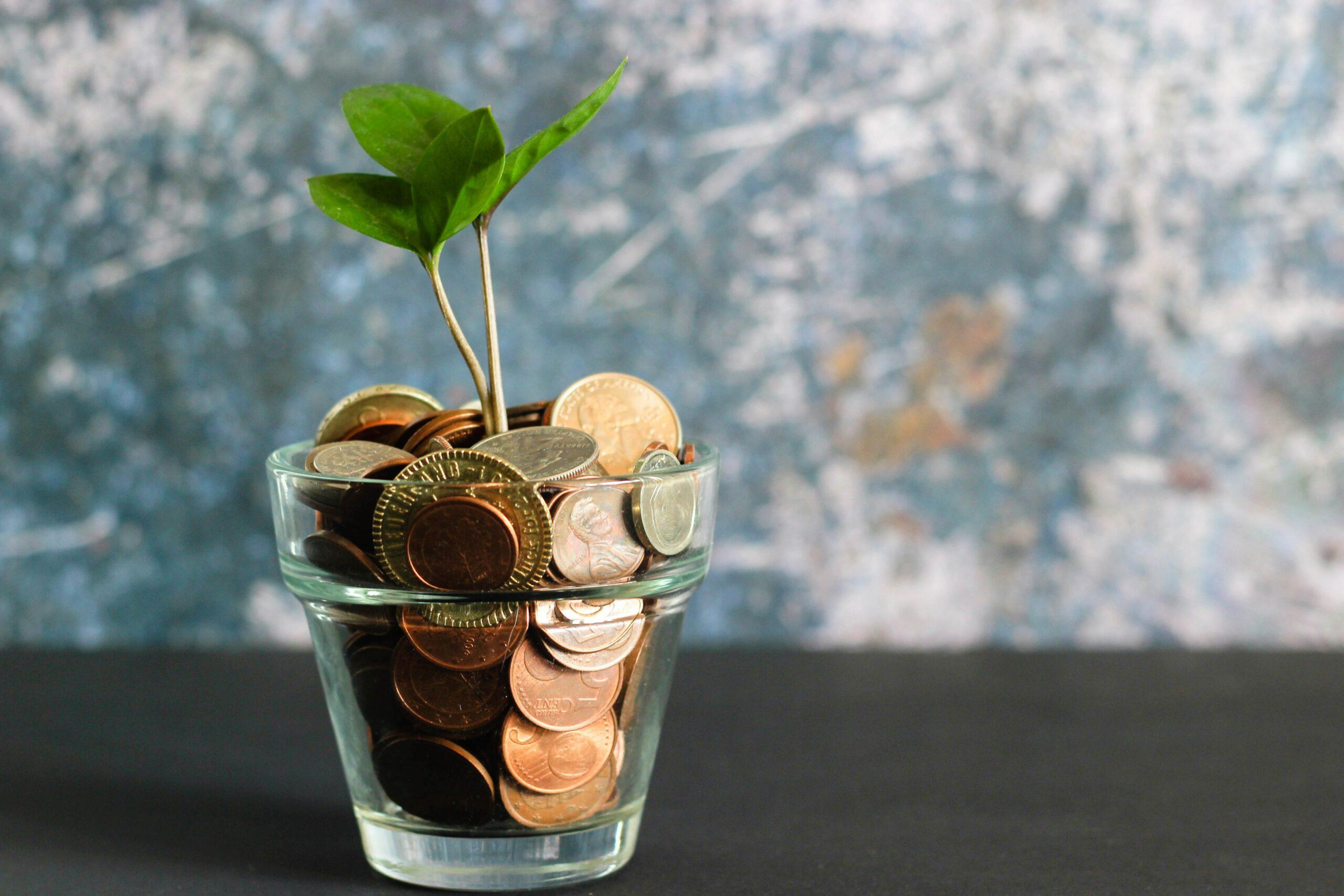 Das Bild zeigt ein Glas gefüllt mit Geldmünzen aus dem eine kleine Pflanze wächst.