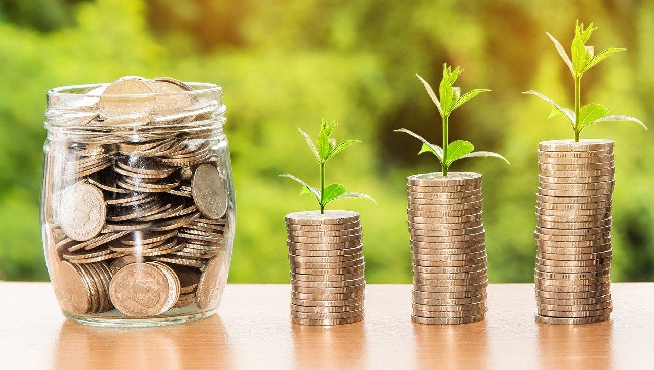 Das Bild zeigt Münzen aus denen eine Pflanze wächst.